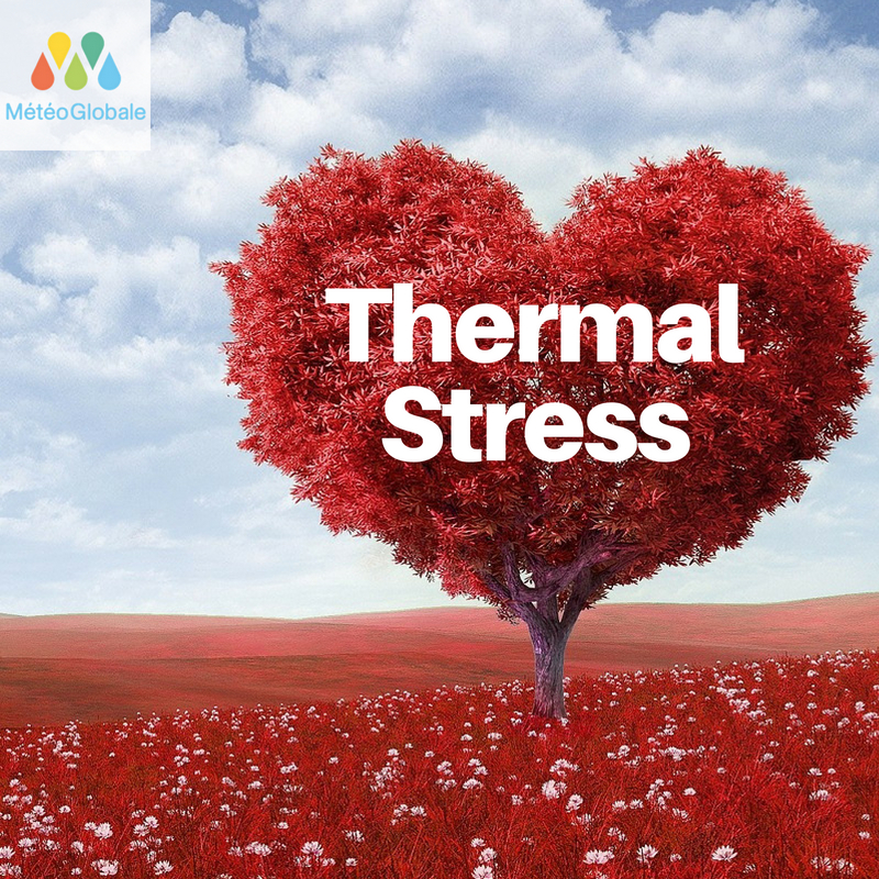 Thermal stress, is it real?