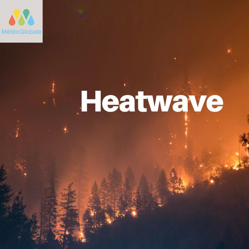 Northern hemisphere heatwave, the worst in 30 years